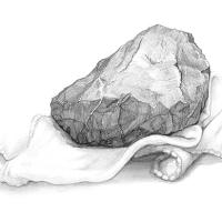 石と布のデッサン