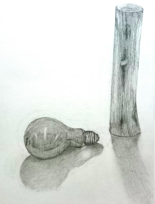 木と電球のデッサン