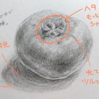 柿のデッサン