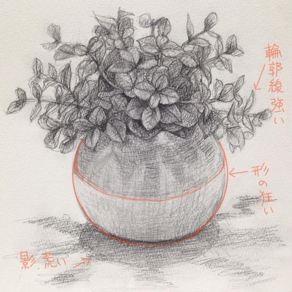 観葉植物のデッサン
