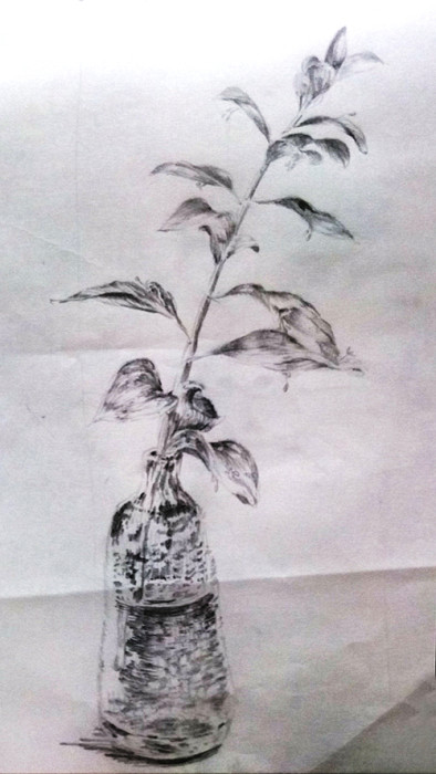 ガラスの一輪挿しと植物のデッサン