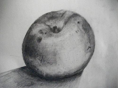 梨のデッサン