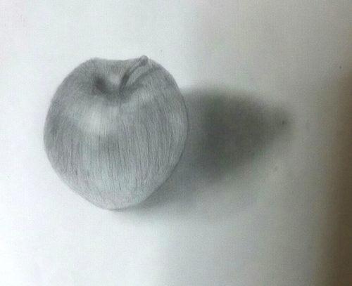食品サンプルの林檎のデッサン
