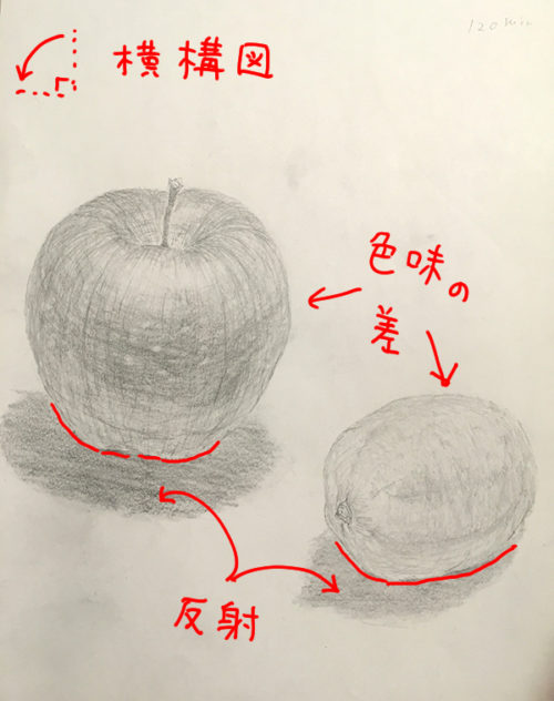 リンゴとレモンのデッサン