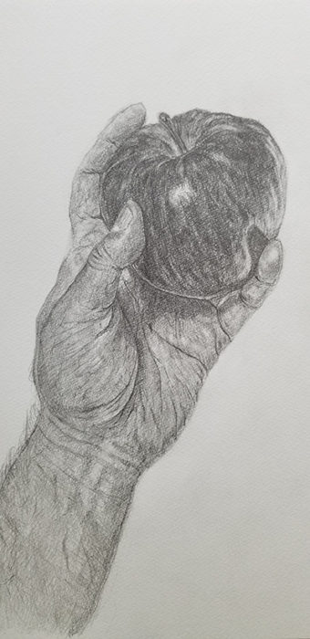 リンゴと手のデッサン